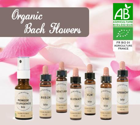 Organic_Bach_Flowers_LaboratoireDioter